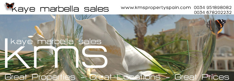 KMS SPAIN logo
