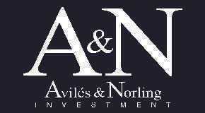 AVILES & NORLING INVESTMENT logo