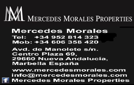 MERCEDES MORALES PROPERTIES logo