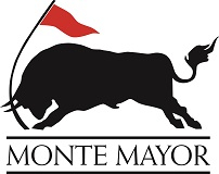 MONTE MAYOR INTERFACE S.L. logo