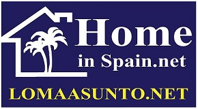 LOMAASUNTO.NET logo