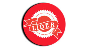 INMOBILIARIA LIDER logo