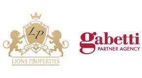 LIONSPROPERTIES logo